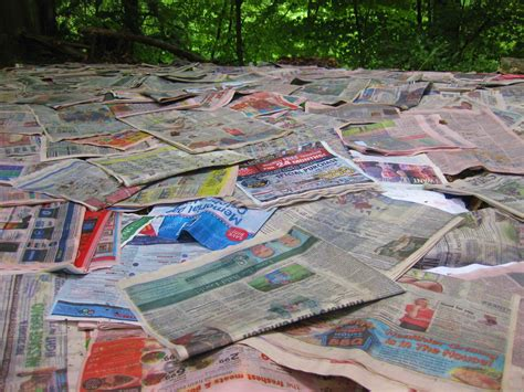 How To Make Paper Mulch - newspaper mulching