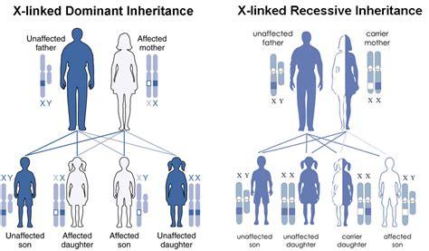 dominant son practicing non mendelian inheritance biology for majors i