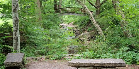Botanical Gardens Asheville by Botanical Gardens Of Asheville