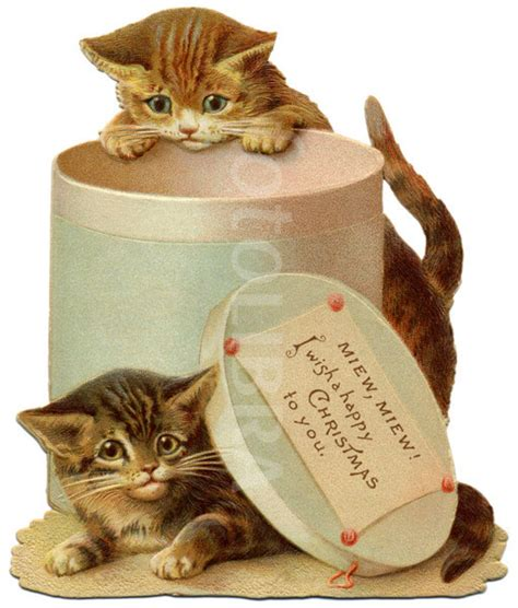 kitten cards vintage cards the