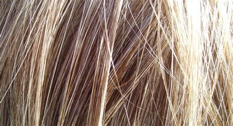 new discoveries in hair regrowth scientists stunned by hair loss treatment discovery