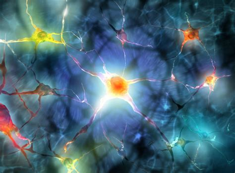 mal di testa centrale cefalea e sistema nervoso centrale cosa lo rende cos 236