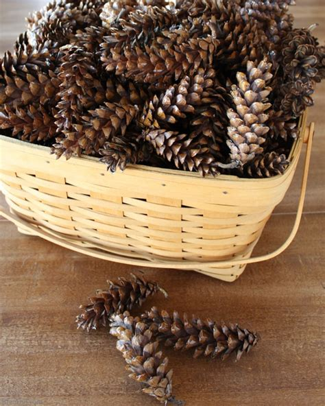 pine cone crafts for nature how to prepare pine cones for crafts bren did