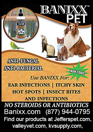 banixx for dogs ear products