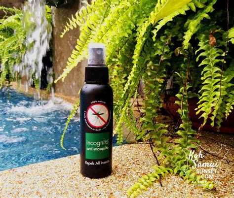 1000 ideas about best mosquito repellent on pinterest diy mosquito repellent insect