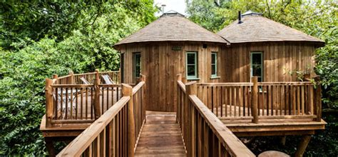 tree house plans uk the treehouse at harptree court somerset canopy stars