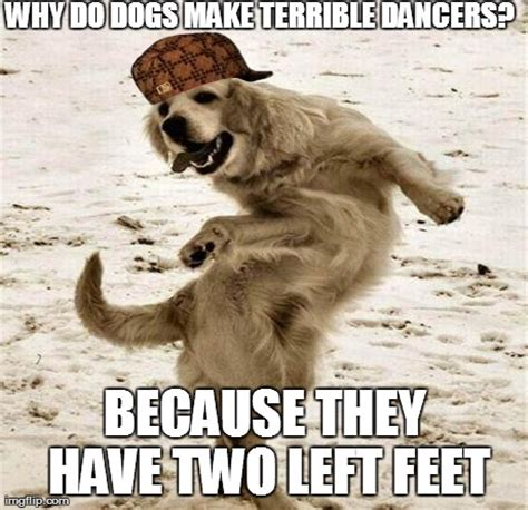 jokes about dogs 15 jokes only owners will understand