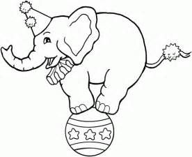 elephant balancing on ball free printable coloring pages