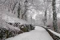 Winter Scenes In Fort Tryon Park