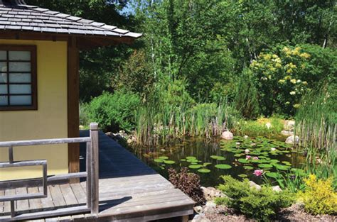 diy backyard pond diy earth news