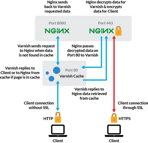 xp configure apache port 443 use varnish nginx to serve wordpress over ssl http on