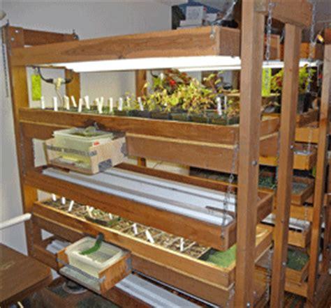 seed starting   garden  winterhaven sara schurr