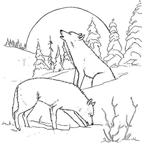 imagenes para colorear lobo dibujo de lobo con luna llena im 225 genes y fotos
