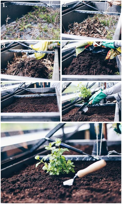 hochbeet anlegen schichten hochbeet tipps anlegen bepflanzen und leckeres gem 252 se
