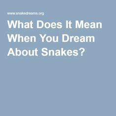 25 best ideas about about snakes on pinterest all about
