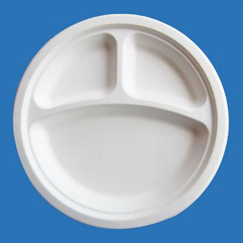 disposable plates with sections paper plate with sections buy paper plate biodegradable