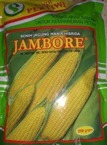 Bibit Jagung Manis Jambore jagung manis hibrida jambore bibit unggul