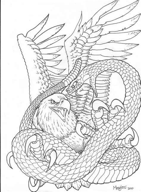 realistic eagle coloring pages realistic eagle drawing snake vs eagle picture eagle