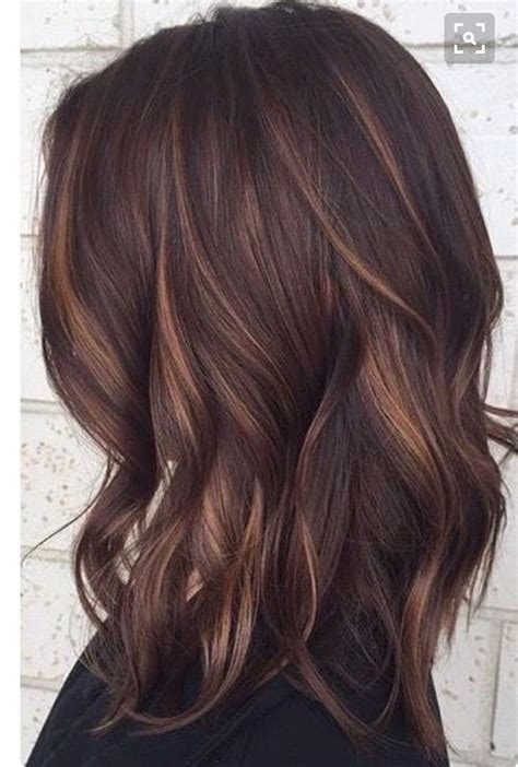 highlight low light brown hair pinterest high and low lights hhair dark brown hairs of