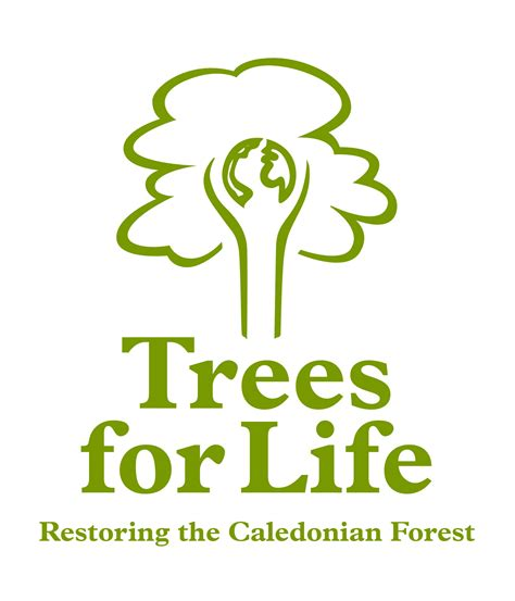 Trees For The Charity Thats Restoring The Caledonian Forest trees for the big give