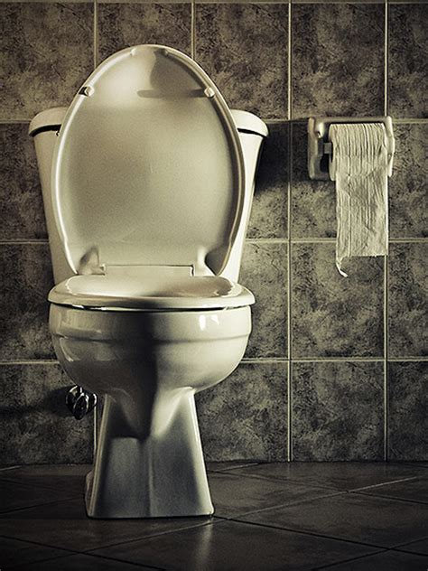 potty stool withholding reportedly dies of attack after eight weeks