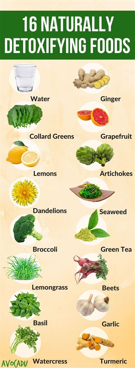 Healthy Diet Detox Cleanse by 16 Foods That Naturally Detoxify Your Lose Weight