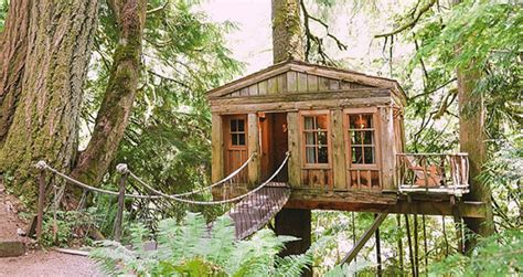 buy tree house 09 10 treehouse masters pete nelson talks about the coolest tiny houses money can