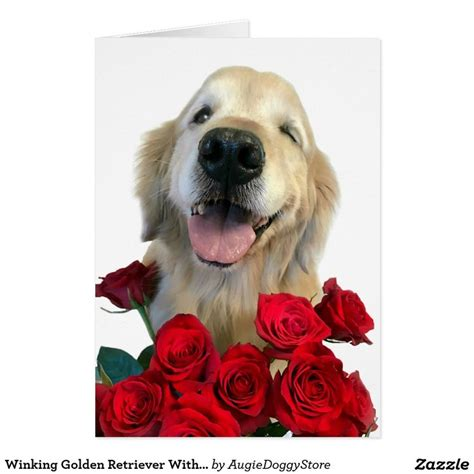 golden retriever day 131 best golden retriever greeting cards postcards images on
