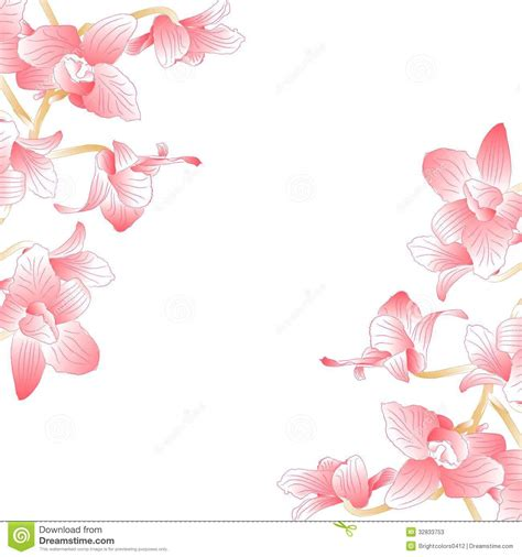 orchideen gestell pink orchid for background or frame stock illustration