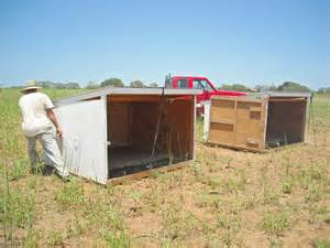 How To Build Goat Shed goat shelter plans what must you look out for when raising goats shed blueprints