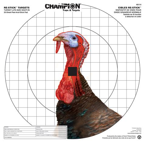 Printable Turkey Targets