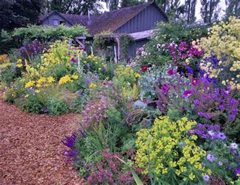 Northwest Garden Ideas Garden Nursery Eugene Or Painetworks Gardening Is Almost A Sport In The Pacific Nw