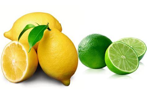 Abs Lemon Outer 柠檬lemon和青柠lime的区别 看新西兰
