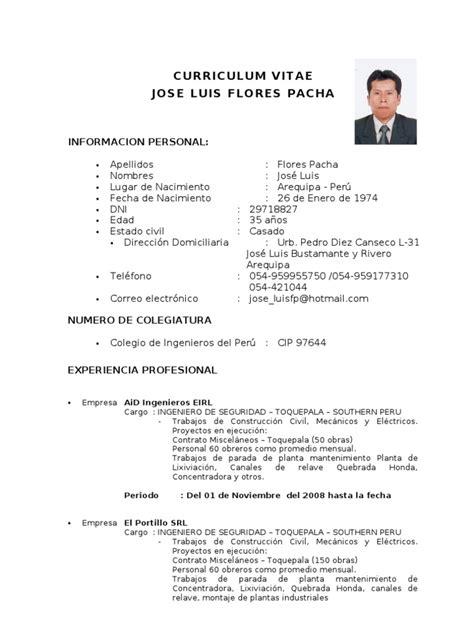 Modelo De Curriculum Vitae Actual Peru Curriculum Vitae 2009