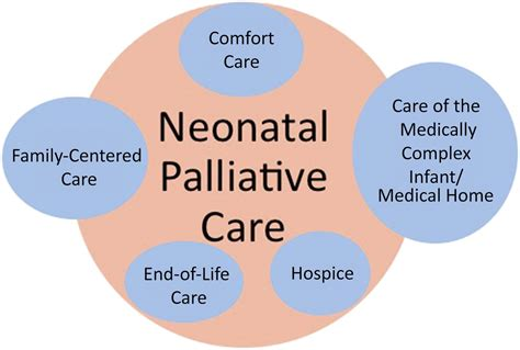 palliative care vs comfort care comfort care vs palliative care is there a difference in