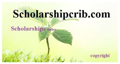 Insead Mba And Sais Ma International Relations by Soas Of Scholarship Scheme