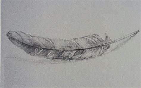 Home Decor Etsy by Original Feather Drawing Pencil Sketch
