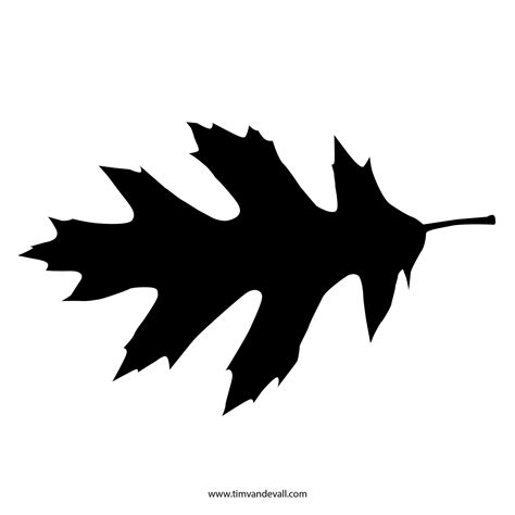 silhouette templates printable leaf stencil outline and silhouette