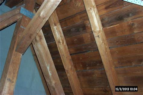 Schimmel Im Dachstuhl Neubau 6851 by Schimmel Im Dachstuhl M 246 Gliche Ursachen Und Ma 223 Nahmen