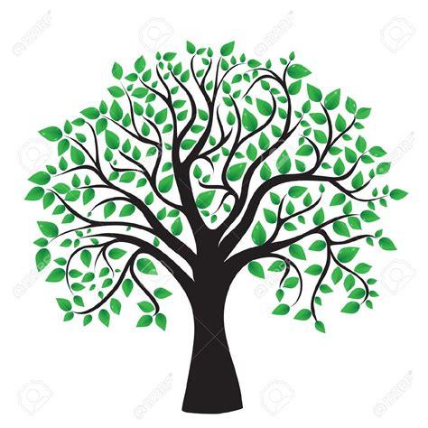 Tree Vector Hledat Googlem Kv 237 Tka Pinterest Family Trees Family Tree Clip Vector