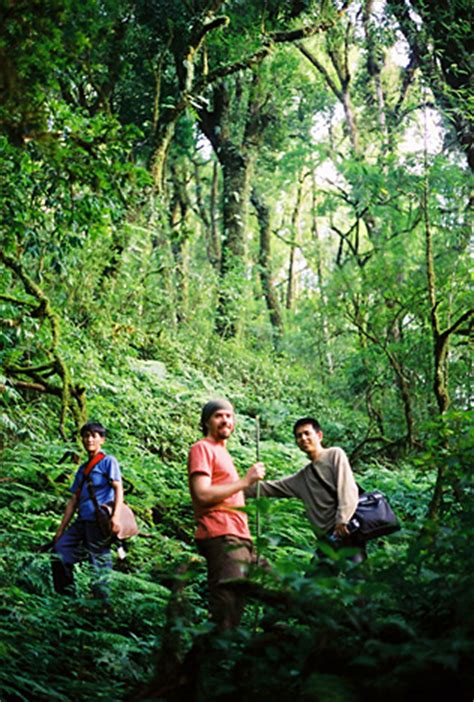 Teh Oolong Kaisar rishi tea began in 1997 by joshua kaiser
