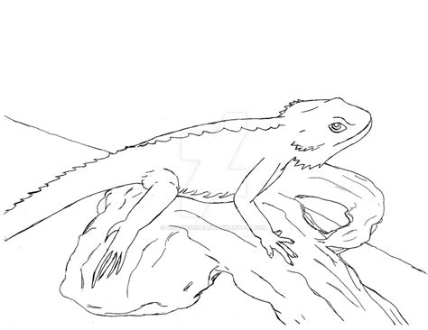 coloring page bearded dragon bearded dragon by nixawesomeart coloring page bearded dragon