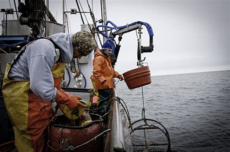 crab fishermen trained as responders for entangled