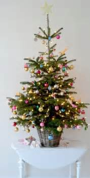 best 25 small christmas trees ideas on pinterest xmas