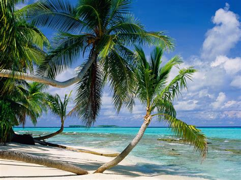 tuvalu islands travel guide exotic travel destination