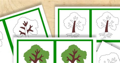 montessori tree printable free montessori printable parts of a tree trillium