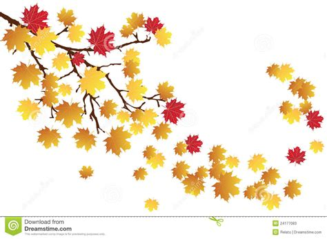 Listi Midi fall tree branch clipart png clipground