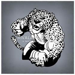 How Strong Are Jaguars Strong Jaguar With Muscles