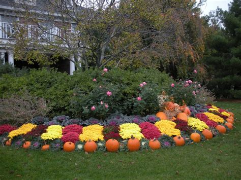 Garden Ideas For Fall Seasonal Landscape Display Fall Autumn Design With Pumpkins And Mums Seasonal Landscape