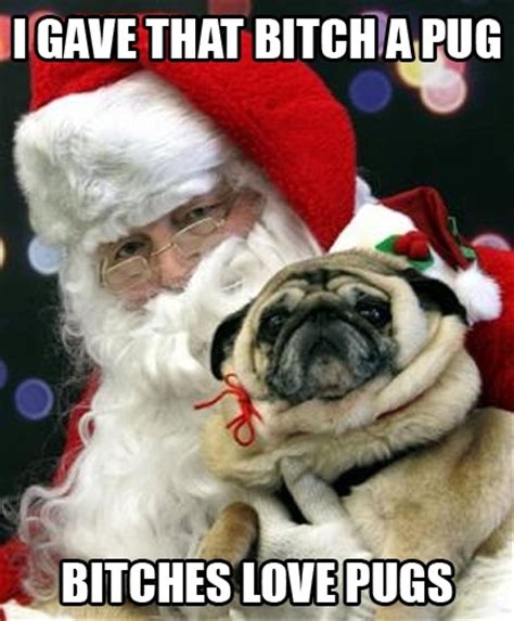 Bitches Love Meme - 174 best images about pug luv